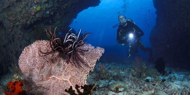 Tatilde 25 metre derinlikte fotoğraf keyfi